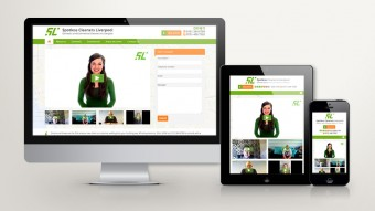 Spotless Cleaners Website Design